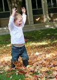 Fun fall leaves. Small child has fun playing in fall leaves; childhood; autumn stock image