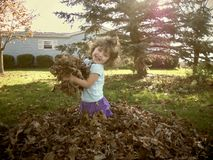 Young Girl Smiling and having Fun in the Fall Leaves Royalty Free Stock Images