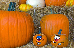 Fun fall pumpkins Royalty Free Stock Images