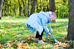Fun with fallen leaves Stock Photos