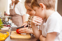 Fun family cooking background. Preparing salad. Fun family cooking background. Children preparing salad at the kitchen counter Royalty Free Stock Photography