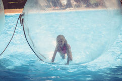 Fun in floating inflatable transparent ball Royalty Free Stock Photos