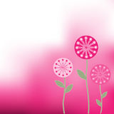 Fun Flower Background Royalty Free Stock Photography