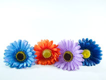 Fun flowers Royalty Free Stock Image