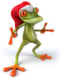 Fun frog Royalty Free Stock Photo