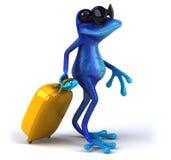 Fun frog Royalty Free Stock Photo