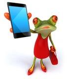 Fun frog Stock Photo