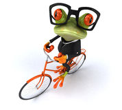 Fun frog Stock Image