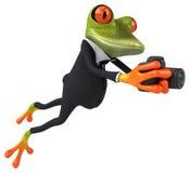 Fun frog Stock Photography