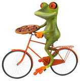 Fun frog Stock Photography