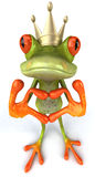 Fun frog with love Royalty Free Stock Photos