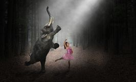 Dancing Elephant, Ballerina Dancer, Girl, Nature. Fun and funny and surreal scene of a young ballerina child dancing with an elephant. The girl uses her royalty free stock images