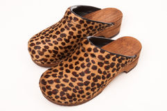 Free Fun Furry Ladies Clog Shoes Royalty Free Stock Photos - 15622548