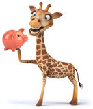 Fun giraffe Royalty Free Stock Photography
