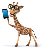 Fun giraffe Royalty Free Stock Photos