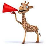Fun giraffe Royalty Free Stock Image