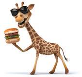 Fun giraffe Stock Photos