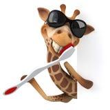 Fun giraffe Stock Image