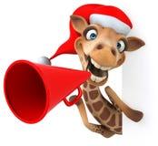 Fun giraffe Royalty Free Stock Image