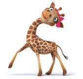 Fun giraffe Stock Photography