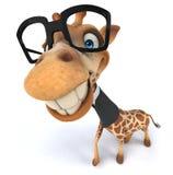 Fun giraffe Royalty Free Stock Photos