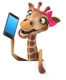 Fun giraffe Royalty Free Stock Photography