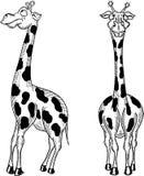 Fun giraffe on a white background Royalty Free Stock Photos