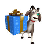 Fun Goat cartoon character with gift box Royalty Free Stock Image