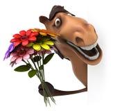 Fun horse Royalty Free Stock Image
