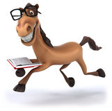 Fun horse Stock Image