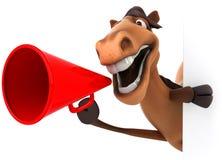 Fun horse Royalty Free Stock Photos