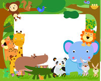 Fun Jungle Animals and banner Royalty Free Stock Images