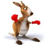 Fun kangaroo Stock Image