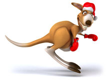 Fun kangaroo Royalty Free Stock Images