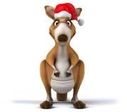 Fun kangaroo Royalty Free Stock Photography