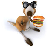 Fun kangaroo Stock Images