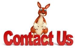 Fun Kangaroo cartoon character  with contact us sign Royalty Free Stock Images