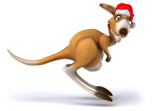 Fun kangaroo Stock Photography