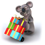 Fun koala Stock Images