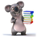 Fun koala Stock Images