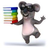 Fun koala Stock Photos