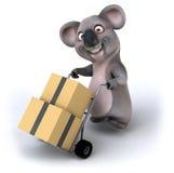 Fun koala Royalty Free Stock Photos