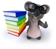 Fun koala Stock Photography