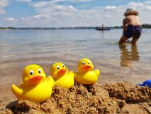 Fun at the lake royalty free stock images