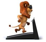Fun lion Stock Photography