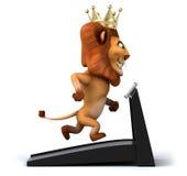 Fun lion Royalty Free Stock Photography