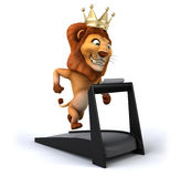 Fun lion Stock Images
