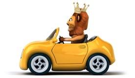 Fun lion Royalty Free Stock Photo