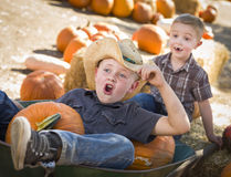 Fun Little Boys Playing in Wheelbarrow at the Pumpkin Patch Stock Images