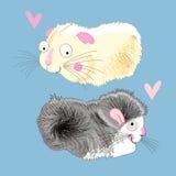 Fun loving hamsters Royalty Free Stock Image